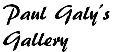 Paul Galy's Gallery